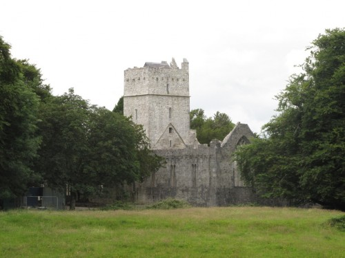 Muckross Abbey, Co. Kerry